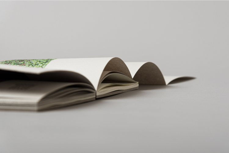 Essay on the Concave City Corner open sipne book printed by KOPA printing